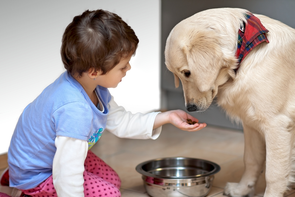 A child feeds a puppy out of its bowl.